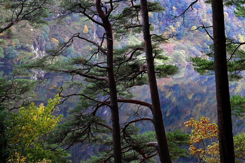 Glendalough Upper Lake ©annie wrightphotography.com