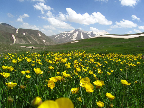 Perzië Iran Shand Mountain © Mehrdad Sarhangi