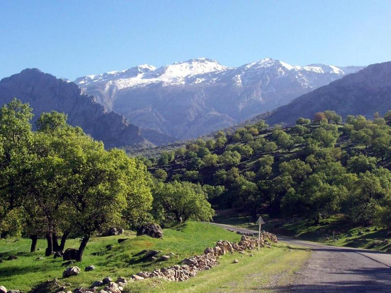 Perzië Iran © Shadegan (goru)